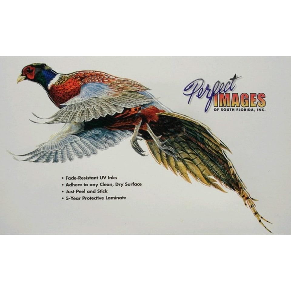 Наклейка фазан