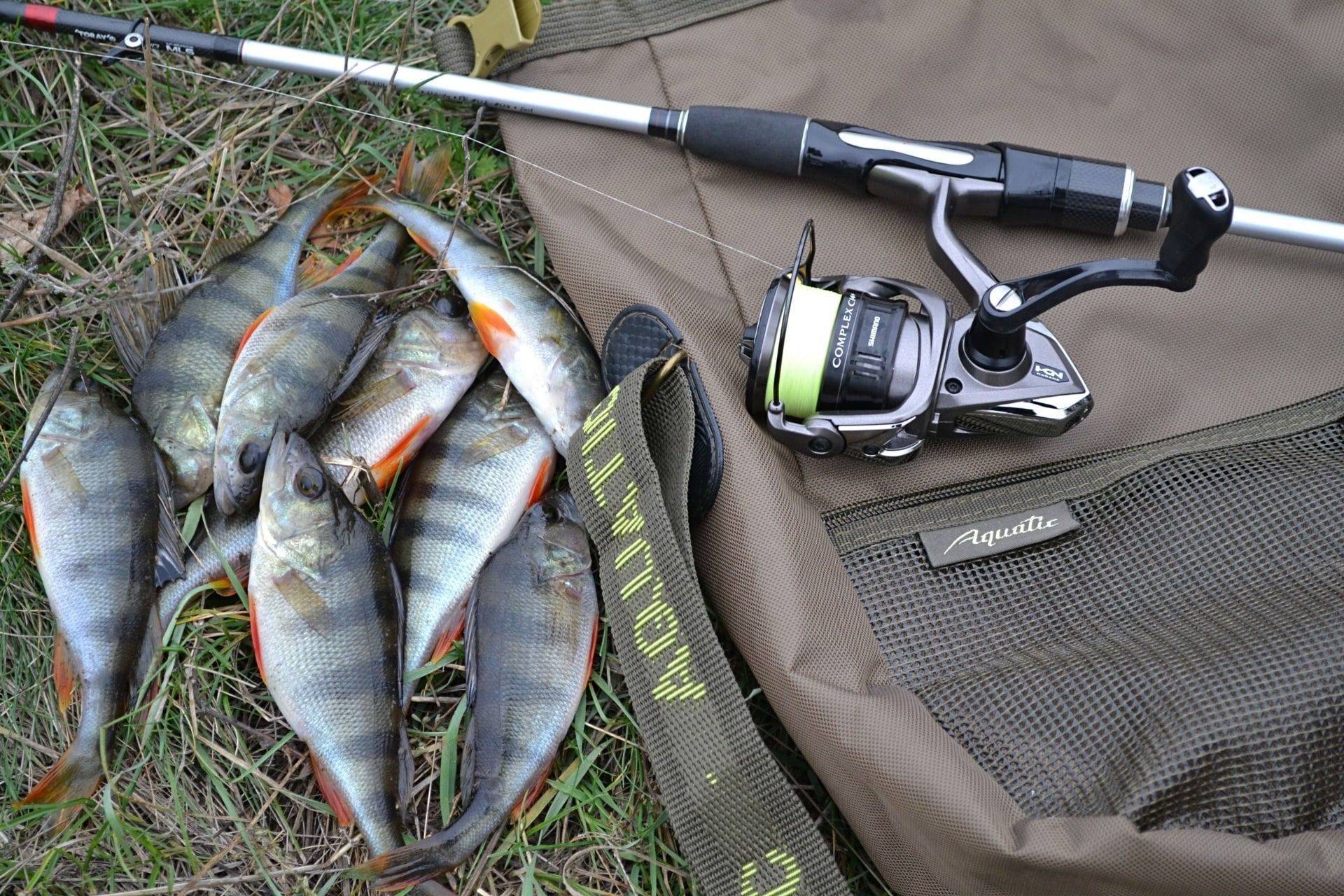 Обзор сумки для рыбы и аксессуаров Aquatic С-18 от Дениса Фалько